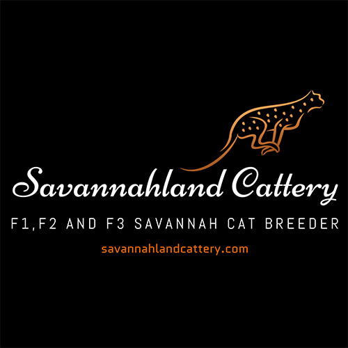SAVANNAHLAND 2019