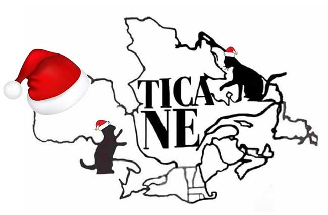 TICA NE Holiday Message