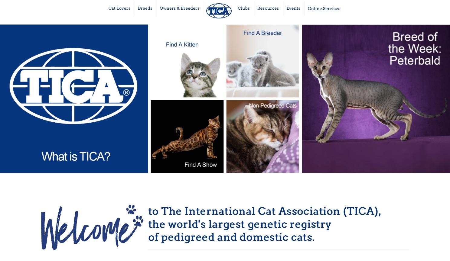 Tica show calendar